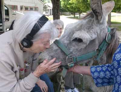 A Visit with Franko the Donkey